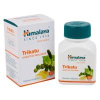 ヒマラヤ|トリカツ(寒さ)